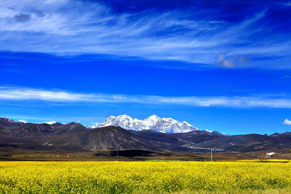 """西藏两家企业获""""全国'万企帮万村'先进民营企业""""荣誉称号"""