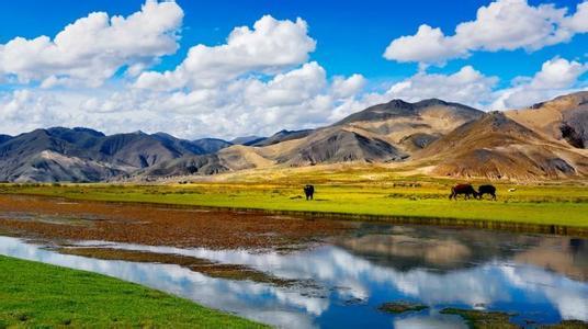 西藏民营经济的雪域逐梦之路