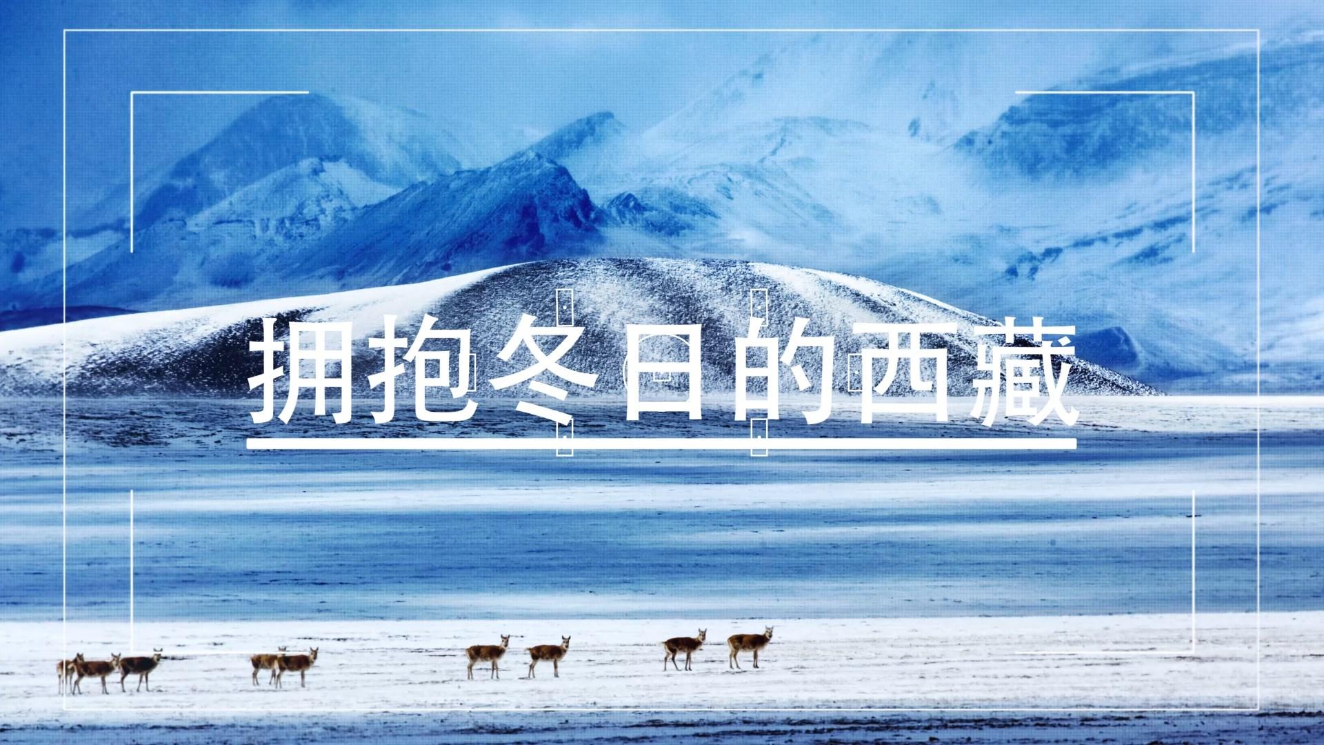 和心跳一起 拥抱冬日的西藏