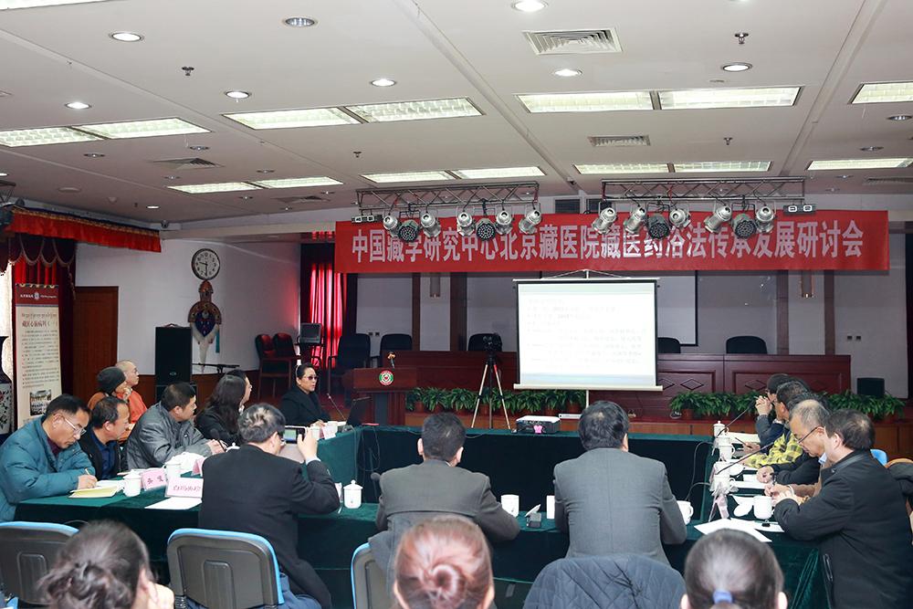 藏医药浴法传承发展研讨会在京举行