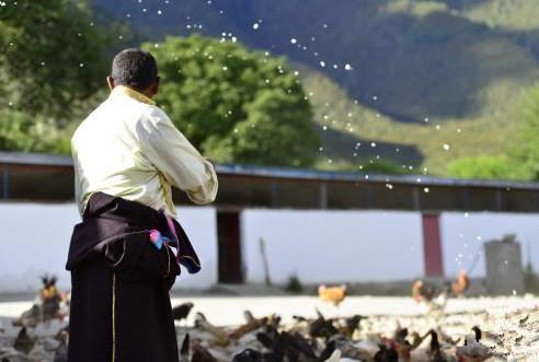 530.000 Einwohner Tibets entkamen statistischer Armut