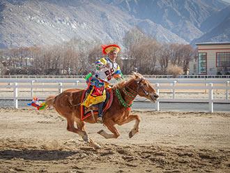 民族传统马术表演献技新年