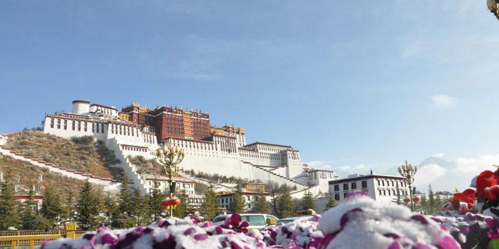 西藏拉萨迎藏历新年首场雪