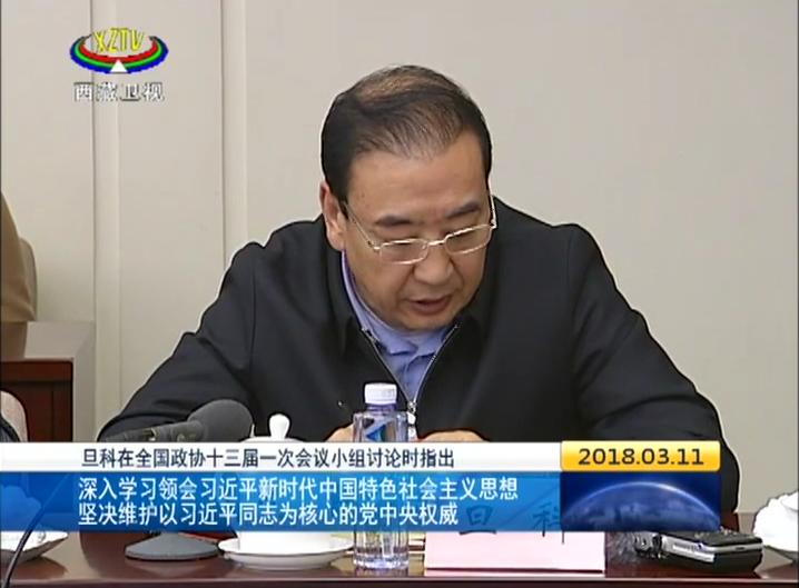 旦科:坚决维护以习近平同志为核心的党中央权威