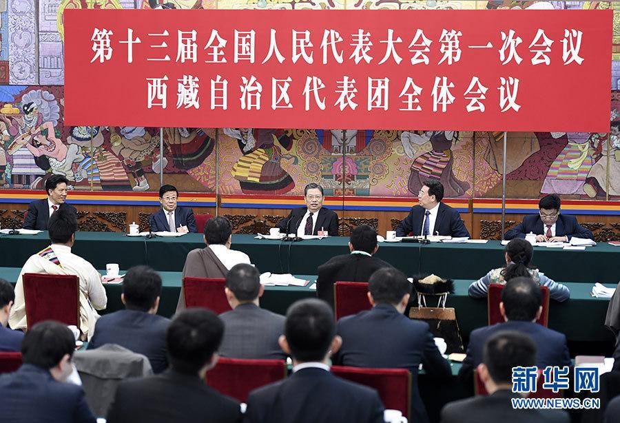 赵乐际参加西藏代表团审议:奋进新时代 共圆中国梦