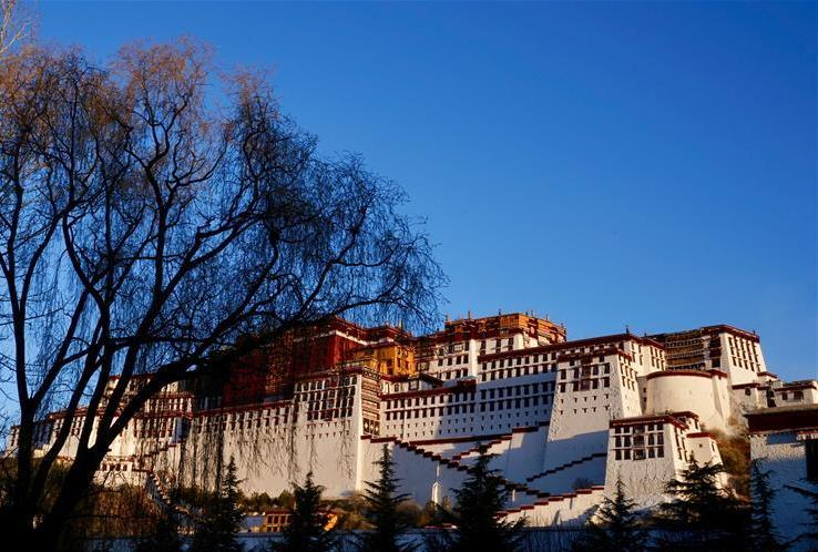 Tibet designates grain growing areas to ensure output