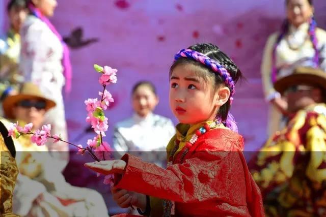 In Nyingchi beginnt das Pfirsichblütenfest