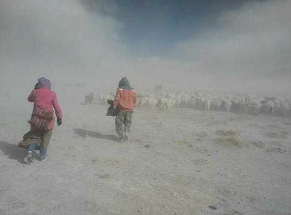 Ngari in Tibet - Fröhliche Nomadenlieder im Winter
