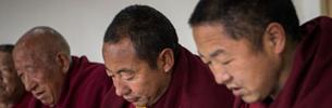 Prüfung rechtlicher Kenntnisse in Tibet: Mönche nehmen teil