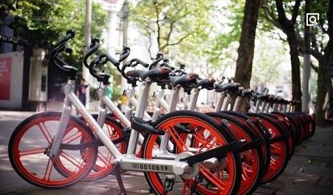 Shared bikes popular in Tibet
