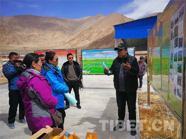 Work team conducts agricultural research in Ngari