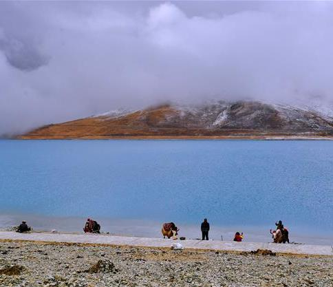 Qinghai-Tibet Plateau human genetic resources database starts construction