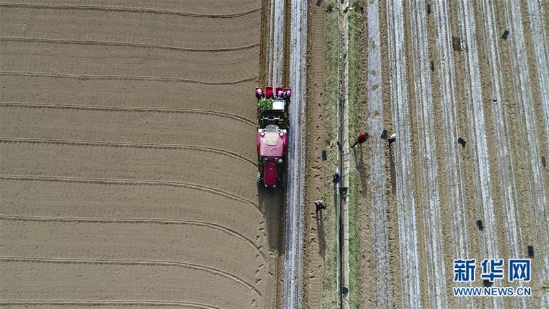 Beidou-Navigationssystem hilft bei der Feldarbeit