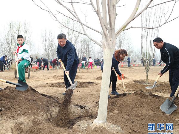 Xi Jinping betont ununterbrochene Bemühungen um Aufforstung