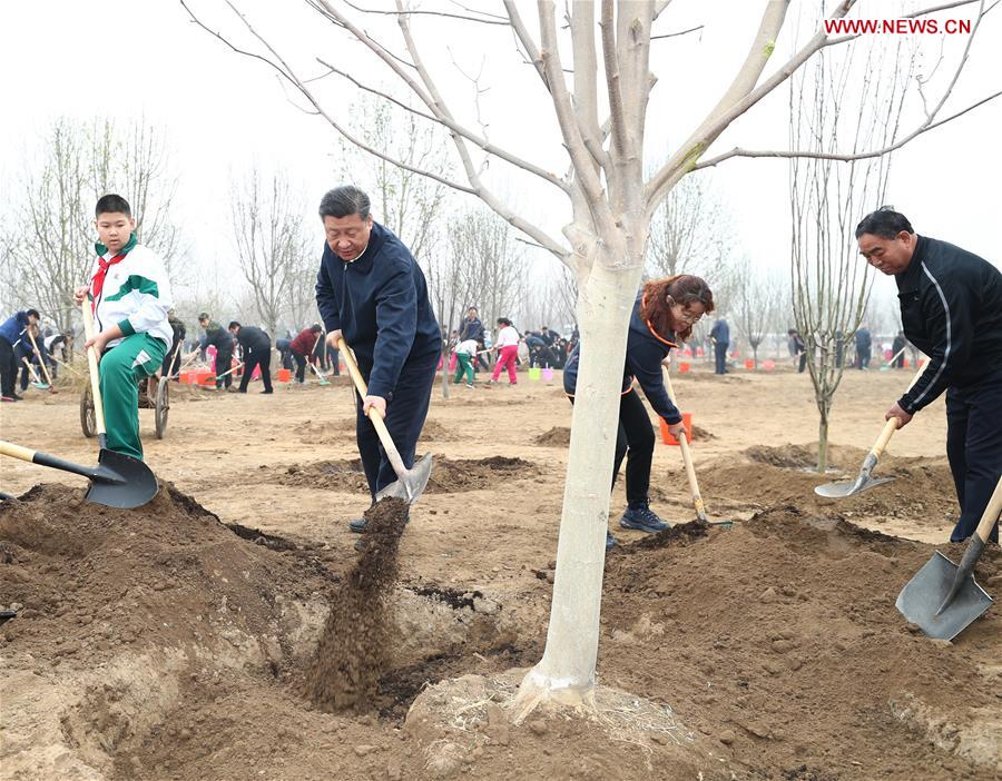 All should treat ecological environment as important as our life: Xi Jinping