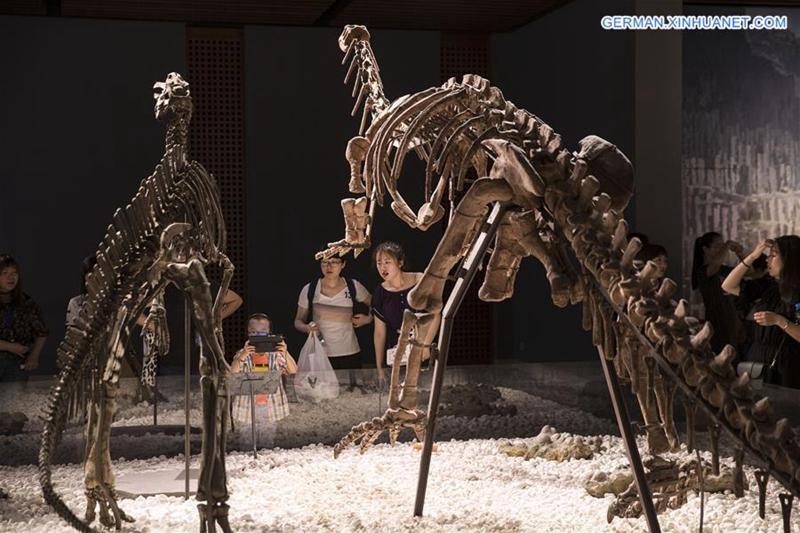 Internationaler Museumstag im ganzen China gefeiert