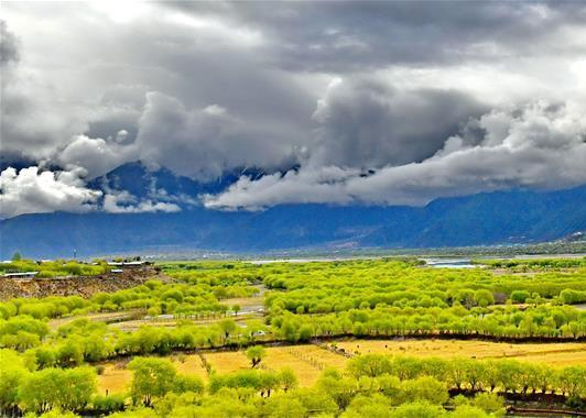 Tibetan border city entices industry to go west