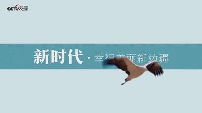 """""""新时代·幸福美丽新边疆""""网络主题活动在西藏启动"""