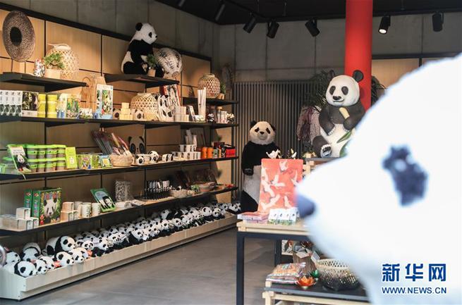 Ganz Berlin im Panda-Fieber