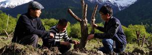Ume-Industrie hilft bei Armutsbek?mpfung
