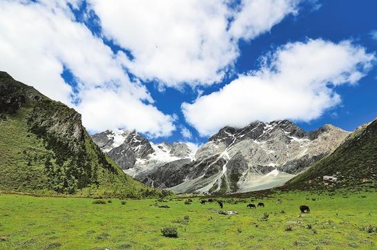 Berge, Menschen und Rinder