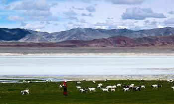 Qinghai errichtet Datenbank zur Umwelt