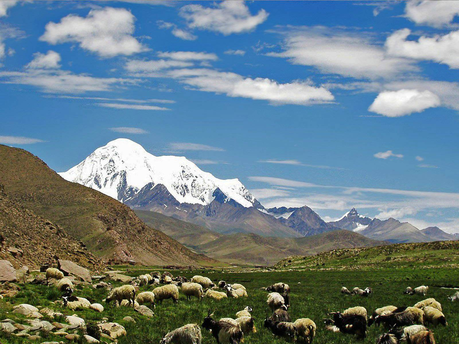 西藏日报:坚定不移贯彻落实习近平总书记治边稳藏重要战略思想