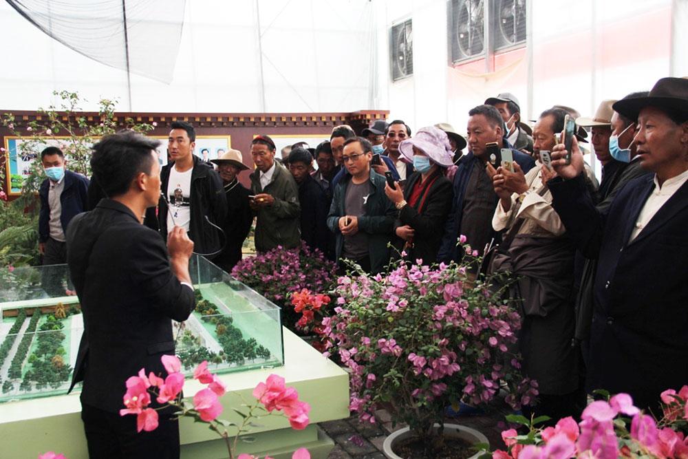 西藏社会主义学院举办区党委统战部驻村点乡镇所辖村居干部能力建设培训班