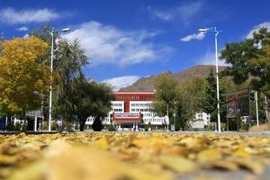 西藏大学赏秋
