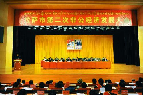 西藏出台促进非公有制经济健康发展若干意见