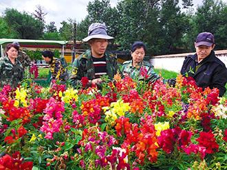 拉萨市用花卉装点景区 喜迎雪顿