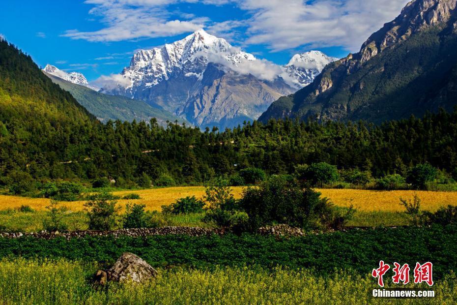 珠峰后花园 一景看四季
