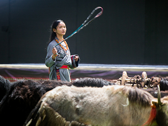 将游牧生活搬上大舞台,当雄县赛马节开幕