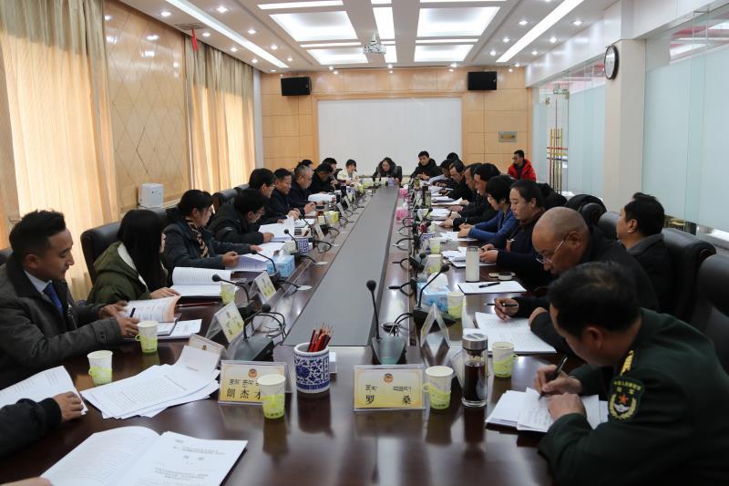 ?自治区政协十一届二次会议举行分组讨论