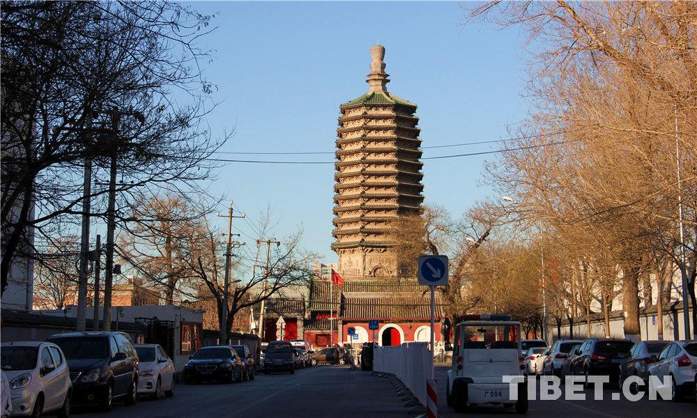 实拍|偶遇北京最高密檐式砖塔,品900年前古建之美韵