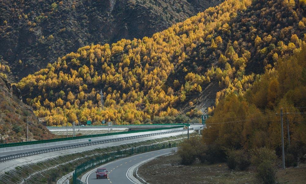 十月,在拉林公路遇见金色的西藏