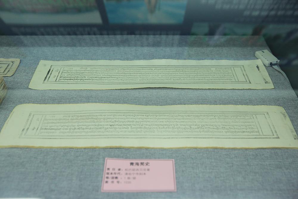 青海省民族自治地方民族文献展在京举行