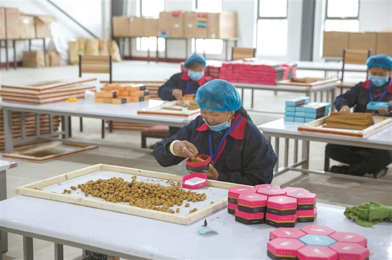 西藏非公有制經濟市場主體已達31萬余戶 市場從業人員達99萬余人