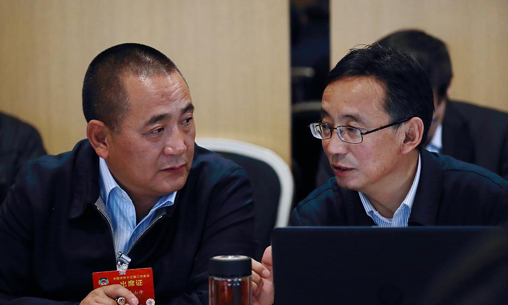 住藏全国政协委员参加民族界别小组会