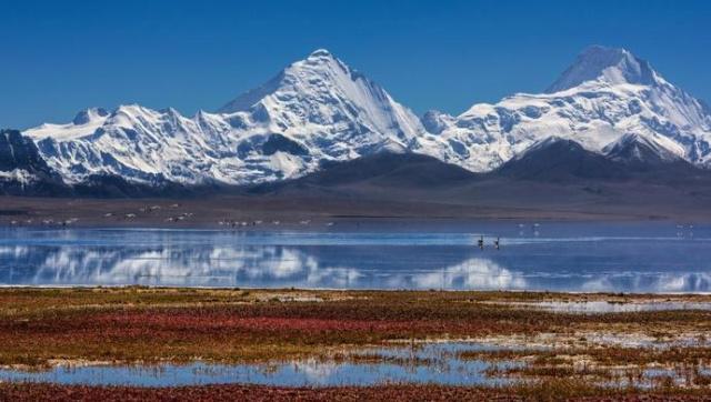 西藏自主品牌及地產產品展示展銷在拉薩啟動  莊嚴出席