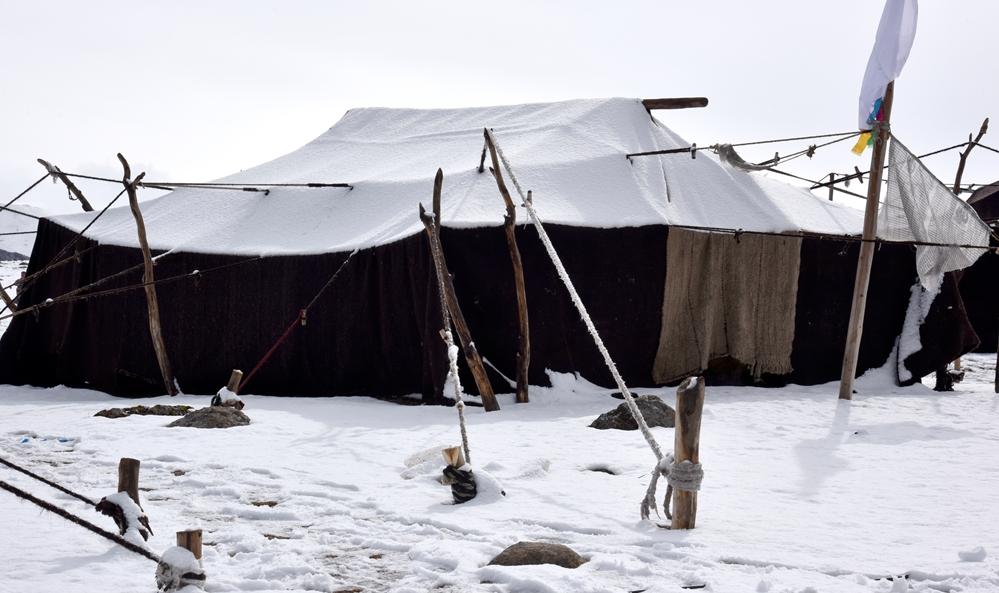 黑帐篷:青藏高原上流动的家