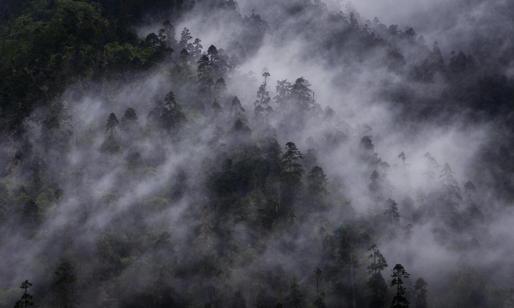 环行藏东南|秘境南伊沟