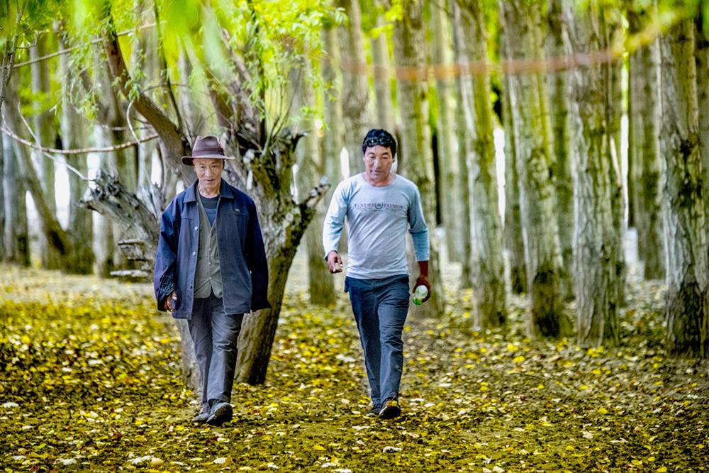 """【和美新西藏】父子护林员:雅鲁藏布江畔的""""绿色卫士"""""""