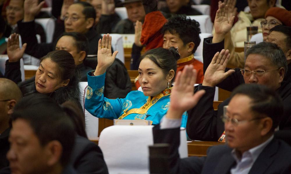 西藏自治区政协十一届三次会议举行选举大会