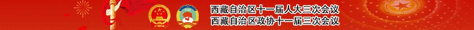 2020年西藏自治区两会新闻