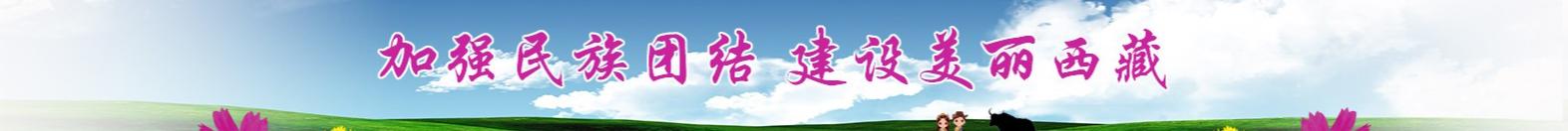 加强民族团结  建设美丽西藏