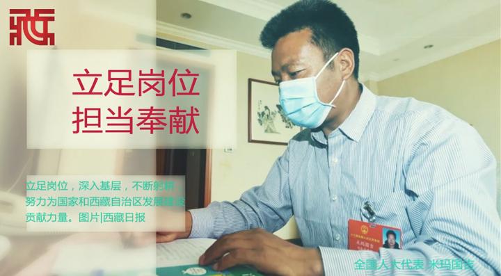 【两会相册】西藏自治区全国人大代表、住藏全国政协委员这样履职