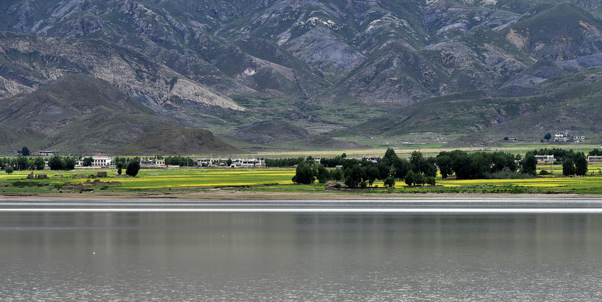 夏日西藏虎头山水库:绿野山川 共绘田园美景