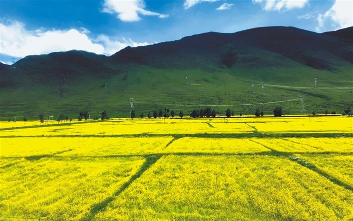西藏深入开展民营经济人士理想信念教育实践活动