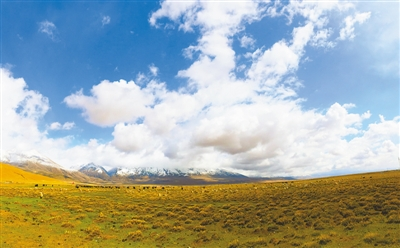 为全面建设社会主义现代化新西藏开好局起好步